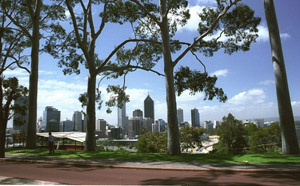 View of the city between trees in Kings Park. Pic: Joanne Lane, www.visitedplanet.com